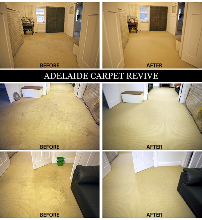 adelaide carpet revive